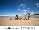 Driftwood Art On Natures Valle...