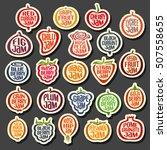 vector set colorful fruits jam... | Shutterstock .eps vector #507558655