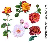 Set Of Watercolor Botanical...