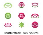 beauty vector flowers design... | Shutterstock .eps vector #507720391