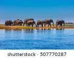 chobe national park is the... | Shutterstock . vector #507770287