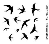 swallow set   vector ... | Shutterstock .eps vector #507832504