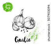 hand drawn sketch garlic group... | Shutterstock .eps vector #507903094