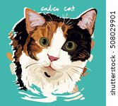 a vector illustration of calico ... | Shutterstock .eps vector #508029901