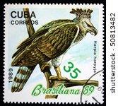 Small photo of CUBA - CIRCA 1989: A stamp printed in Cuba shows Harpy Eagle - Harpia harpyja, circa 1989