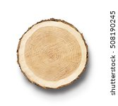 smooth wood surface of cut tree ... | Shutterstock . vector #508190245