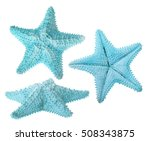 set of light blue starfishes... | Shutterstock . vector #508343875