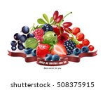 mix of fresh berries isolated... | Shutterstock .eps vector #508375915