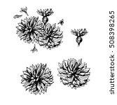 hand drawn cornflowers. pattern ... | Shutterstock .eps vector #508398265