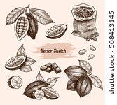 vector cocoa hand drawn sketch .... | Shutterstock .eps vector #508413145