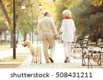 Stock photo senior couple and big dog walking in park 508431211