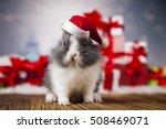 rabbit in red santa hats ... | Shutterstock . vector #508469071