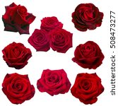 Stock photo collage of red roses isolated on white background 508473277