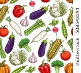 vegetables pattern. farm fresh... | Shutterstock .eps vector #508543291