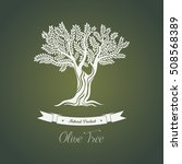 olive tree logo with branches... | Shutterstock .eps vector #508568389