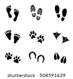 human and animal footprints... | Shutterstock .eps vector #508591639