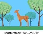 young fallow deer female in... | Shutterstock . vector #508698049
