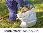 A Gardener Sweeper Fills A Big...