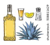 set of tequila bottle  shot ... | Shutterstock .eps vector #508811629