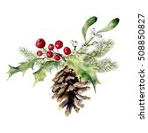 watercolor fir cone with... | Shutterstock . vector #508850827