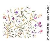 watercolor abstract wildflowers ... | Shutterstock . vector #509059384