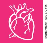 heart vector icon hand drawn...   Shutterstock .eps vector #509177545