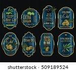olive oil retro vintage...   Shutterstock .eps vector #509189524