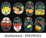 set of organic fruit retro... | Shutterstock .eps vector #509190331