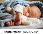 sleeping newborn baby hugging a ...   Shutterstock . vector #509277454