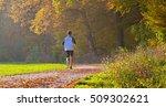 jogging in autumn | Shutterstock . vector #509302621