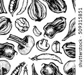 hand drawn vector illustration. ... | Shutterstock .eps vector #509315851