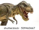 Tyrannosaurus Rex Isolated In...