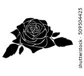 silhouette of rose on a white... | Shutterstock .eps vector #509504425