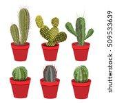 cacti in pots | Shutterstock .eps vector #509533639
