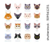 Cats Faces Collection. Vector...