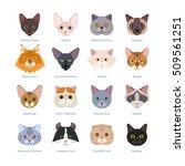 cats faces collection. vector... | Shutterstock .eps vector #509561251