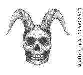 Skull With Horns. Human Skull...
