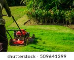lawn mower cutting green grass... | Shutterstock . vector #509641399