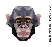 polygon animal pet zoo monkey... | Shutterstock .eps vector #509674369
