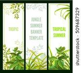 tropical plant. vertical banner ...   Shutterstock .eps vector #509687329