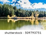 reflections of autumn trees on... | Shutterstock . vector #509793751