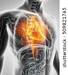 3d illustration of heart   part ... | Shutterstock . vector #509821765