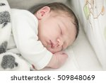 infant baby boy sleeping... | Shutterstock . vector #509848069