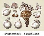 set fruits sketch. hand drawn... | Shutterstock .eps vector #510063355