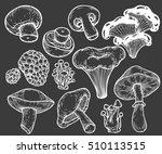 mushroom hand drawn sketch... | Shutterstock .eps vector #510113515