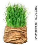 green grass in the old pack | Shutterstock . vector #51032383