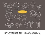 set with a variety of mushrooms....   Shutterstock .eps vector #510380077