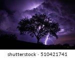 Tree With Lightning Strikes