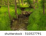 green nature  | Shutterstock . vector #510527791