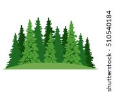 isolated pine tree plant design   Shutterstock .eps vector #510540184
